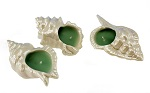 Wax filled pearlescent shell shapes - Assorted set of 3
