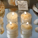 Shell tea lights - Bulk pack of 24