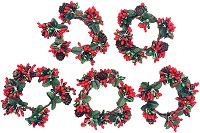 Berry and pinecone wreaths - Set of 5